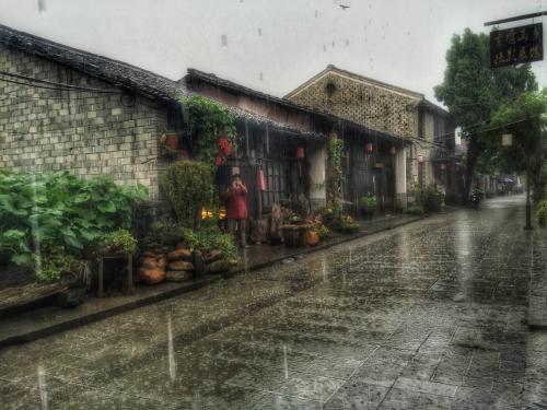 优美散文:窗外的雨