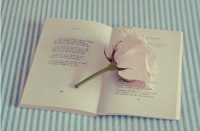 散文:夏日闲读